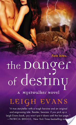 Review: The Danger of Destiny by Leigh Evans
