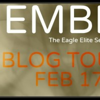 Blog Tour plus Giveaway for Ember by Rachel Van Dyken