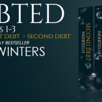 Sale Blitz: Indebted Box Set by Pepper Winters