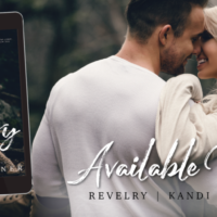 Release Blitz: Revelry by Kandi Steiner with Excerpt & Review