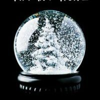 A Sinner's Christmas………The Christmas Truce by Tiffany Reisz  #BookReview