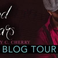 Blog Tour: Behind The Bars by Brittainy C. Cherry