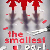Discover the journey….. The Smallest Part by Amy Harmon