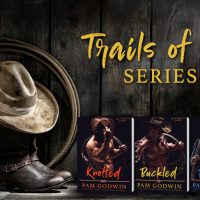 Cover Reveal: Trails of Sin Series by Pam Godwin