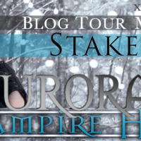 Stakeout by Nikki Jefford: Guest Post!