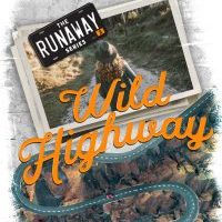 Cover Reveal: While Highway by Devney Perry